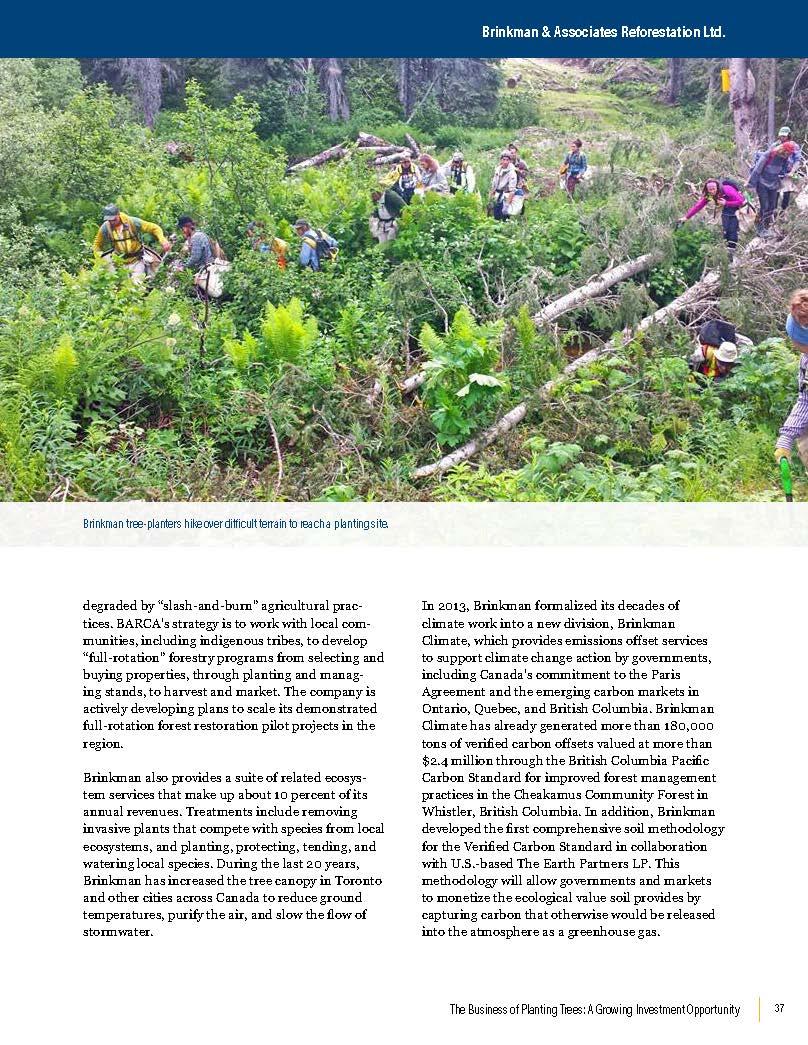 business-planting-trees_Brinkman Profile Excerpt 1_Page_2.jpg
